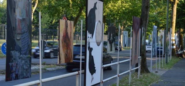 9 juin 2015 , Bochum (Allemagne)